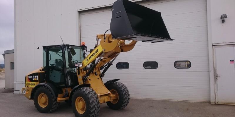 Cat906 (2)